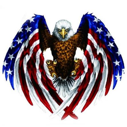 Nálepka American Eagle